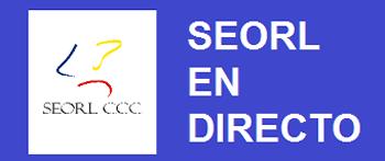 MINIBANNER SEORL EN DIRECTO_350