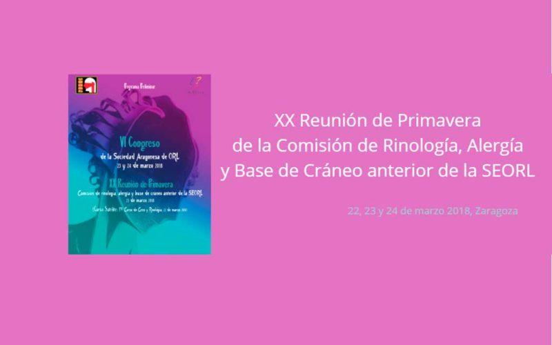 La Comisión de rinología y alergia celebrará su reunión de primavera en Zaragoza