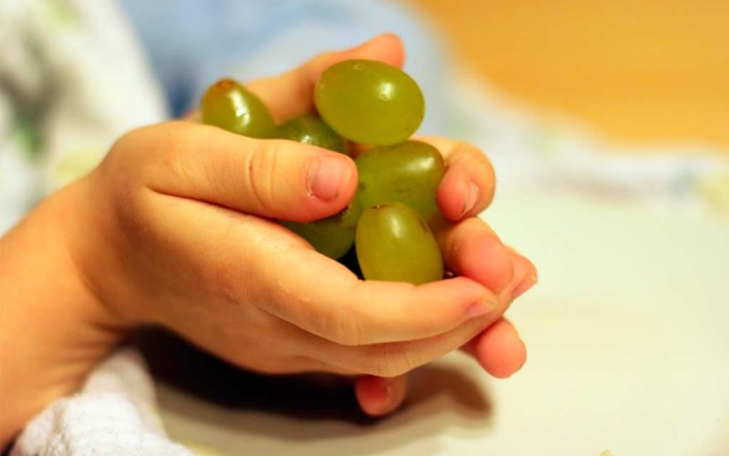 Uvas, frutos secos y juguetes, los más frecuentes en los atragantamientos de niños