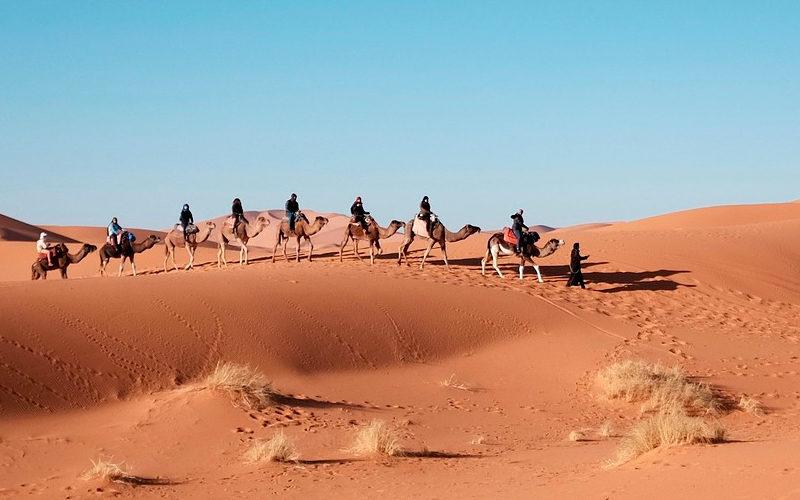 Nuevo proyecto humanitario de la SEORL-CCC en el Sáhara